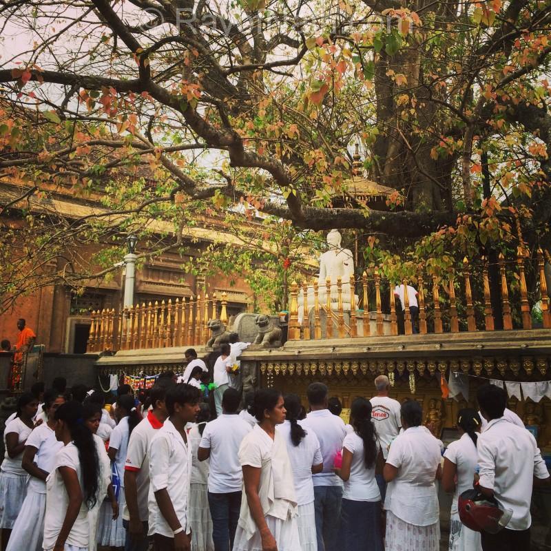 Important jour de pleine lune au temple