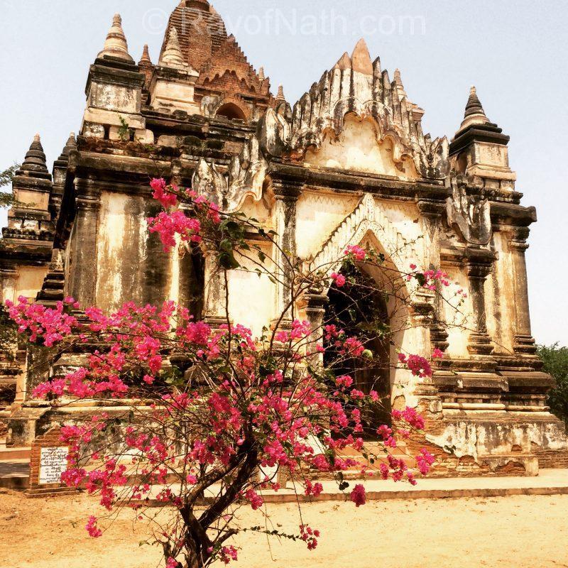 Joli contraste - pagode à Bagan