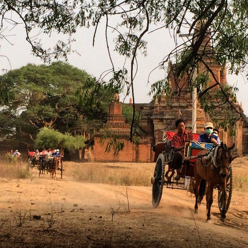 Des touristes dans le carrosse tiré un cheval à Bagan