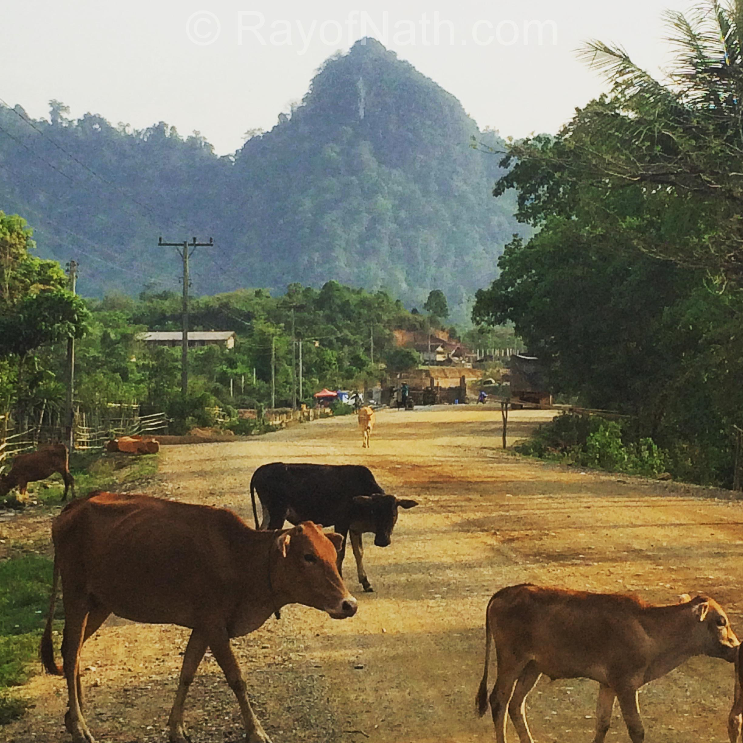 Small road in a village in Laos