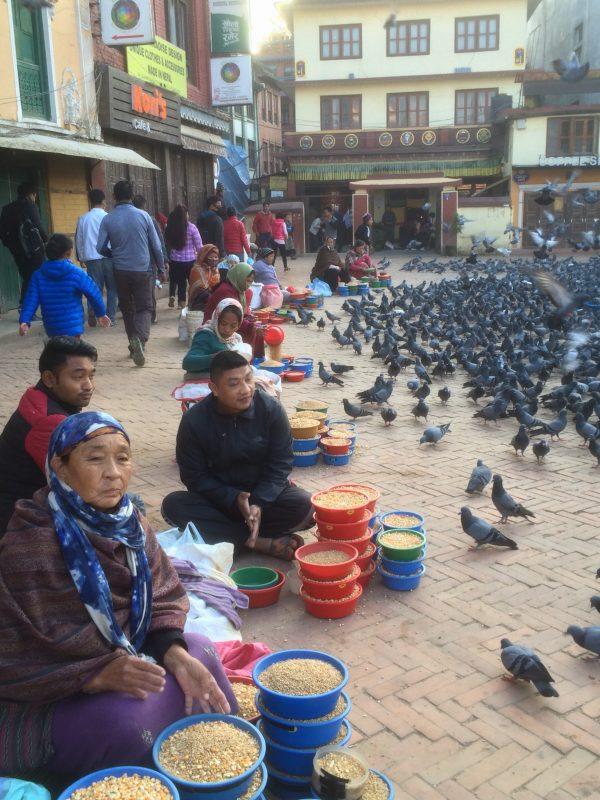 Vendeurs de maïs et pigeons sur la place du stupa, Boudhanath