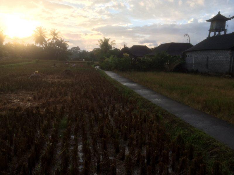 premiers rayons du soleil, Penestanan, Ubud, Bali