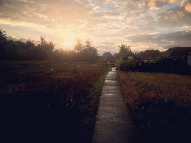 Lever du soleil, Penestanan, Bali