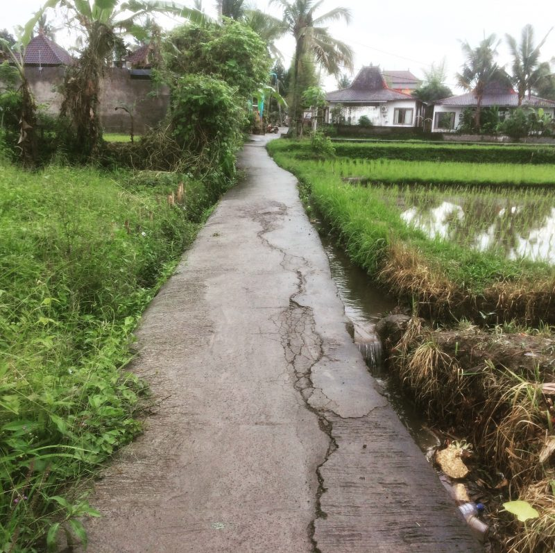 Rue du village de Penestanan, Bali